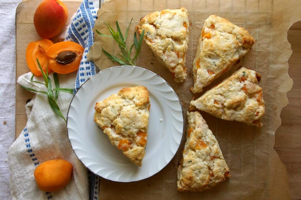 Apricot Tarragon Scones