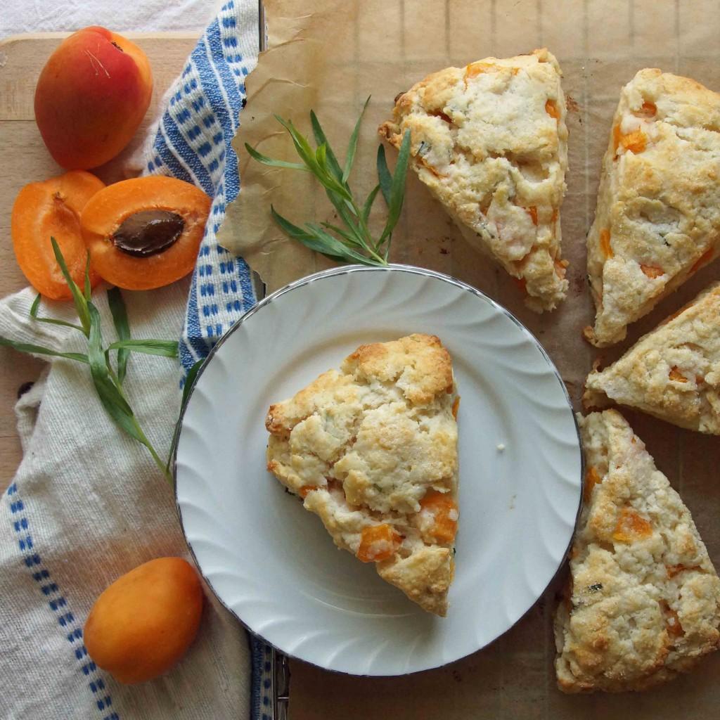 Fresh Apricot & Tarragon Scones