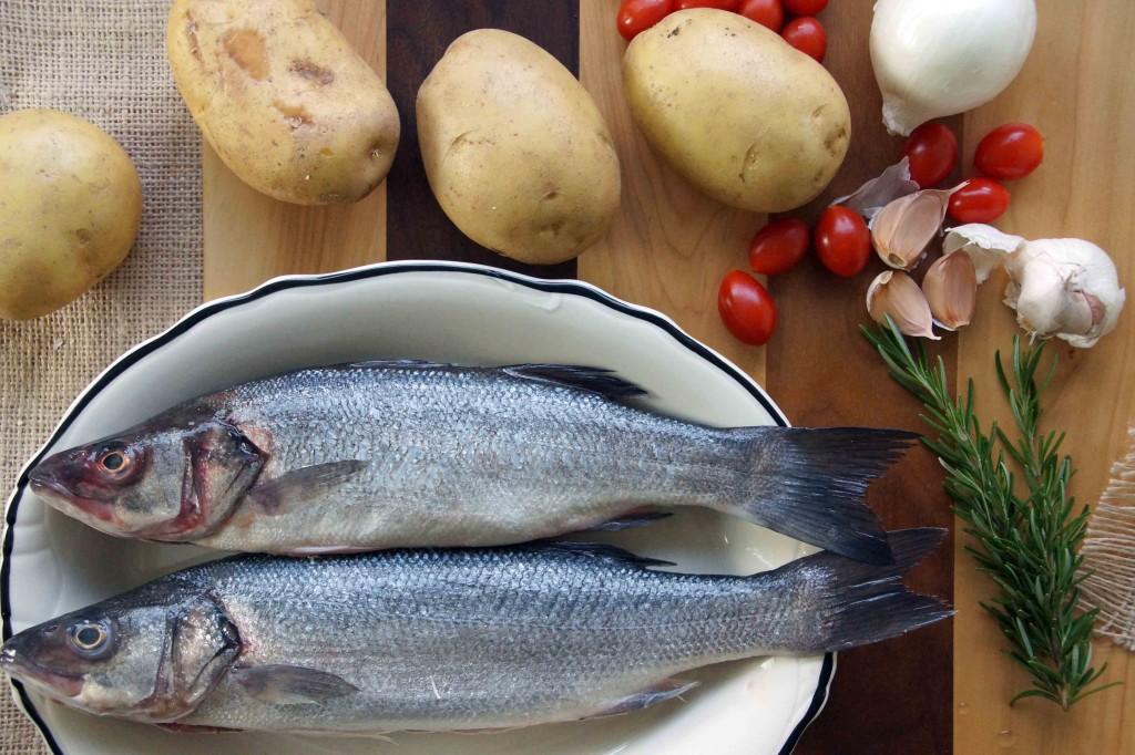 Mediterranean Sea Bass