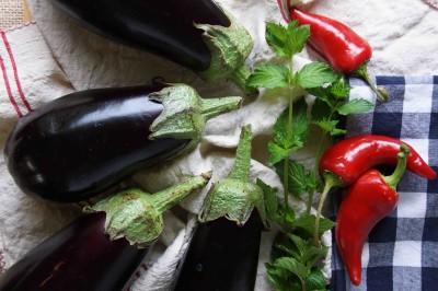 Eggplants, Peppers, and Mint