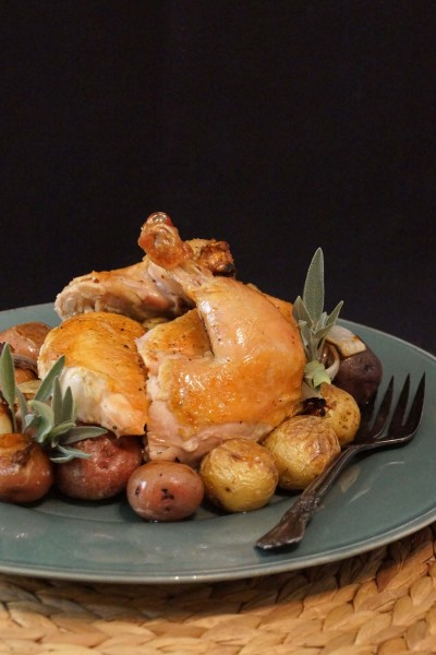Roast Chicken with Apple Cider Pan Gravy