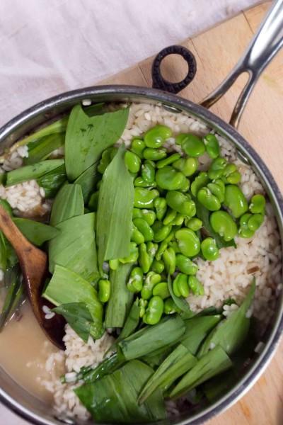 Fava Bean & Ramp Risotto
